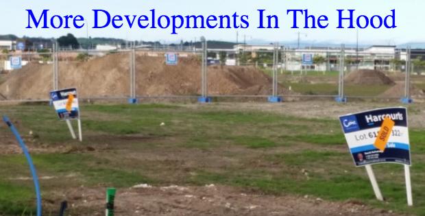 papamoa development