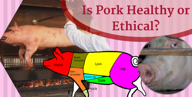 pork not healthy or ethical